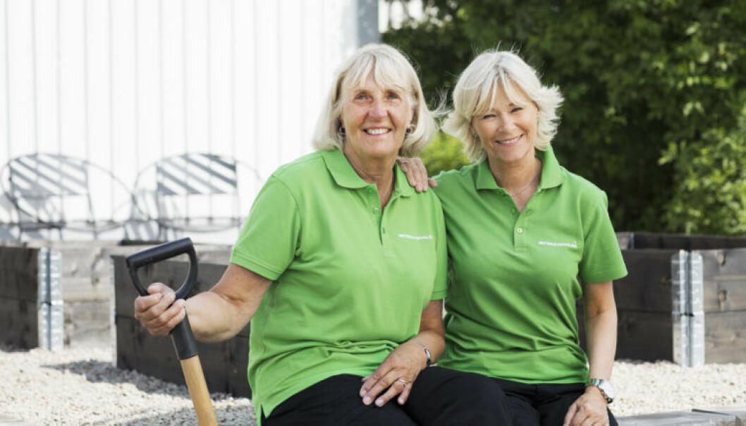 Andelen utomhusjobb, som trädgårdsarbete, måleri och snickeri, har gjort att Veteranpoolen under sommaren har fått mer att göra igen.