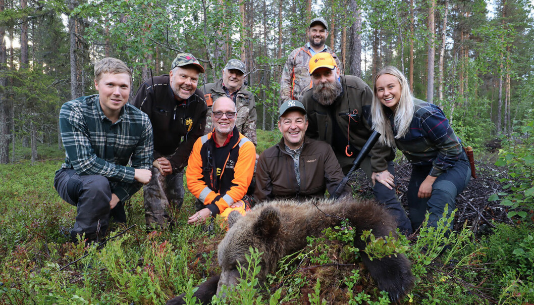Lyckad björnjakt för jägarna i Gålvattenbergets jaktlag.