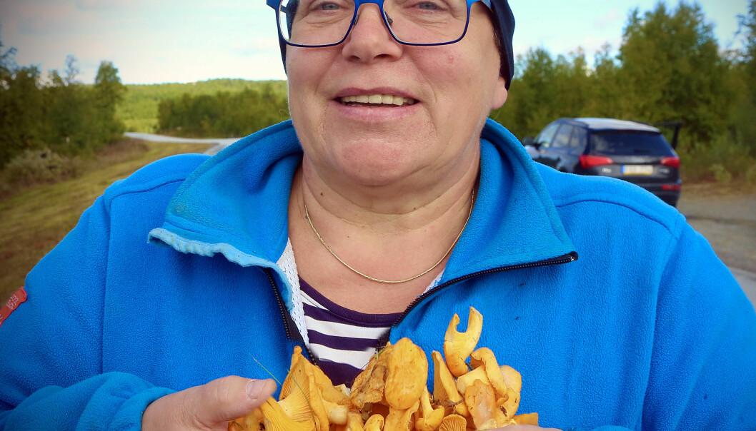 Gunilla Busk från Funäsdalen drog över gränsen. —Men kantarellerna är lite små ännu. Kanske det varit för torrt, kallt eller man kanske borde vänta en vecka.