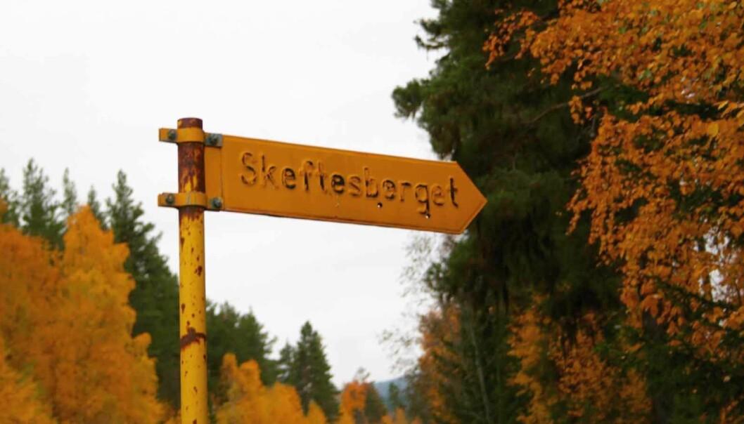 Är Skifteshöjden och Skeftesberget samma sak?