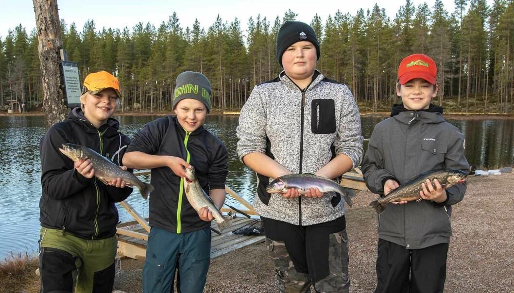 Ett lyckat fiskafänge vid Stortjärn. Från vänster: Sam Landgren, Erik Nordin, Kevin Nyström Olsson och Ville Silversnö.