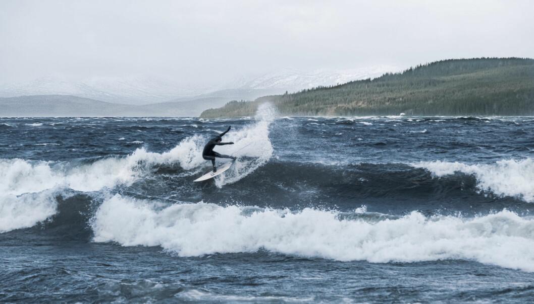 Den kände surfaren Tim Latte jagar vågorna på Sulviken.