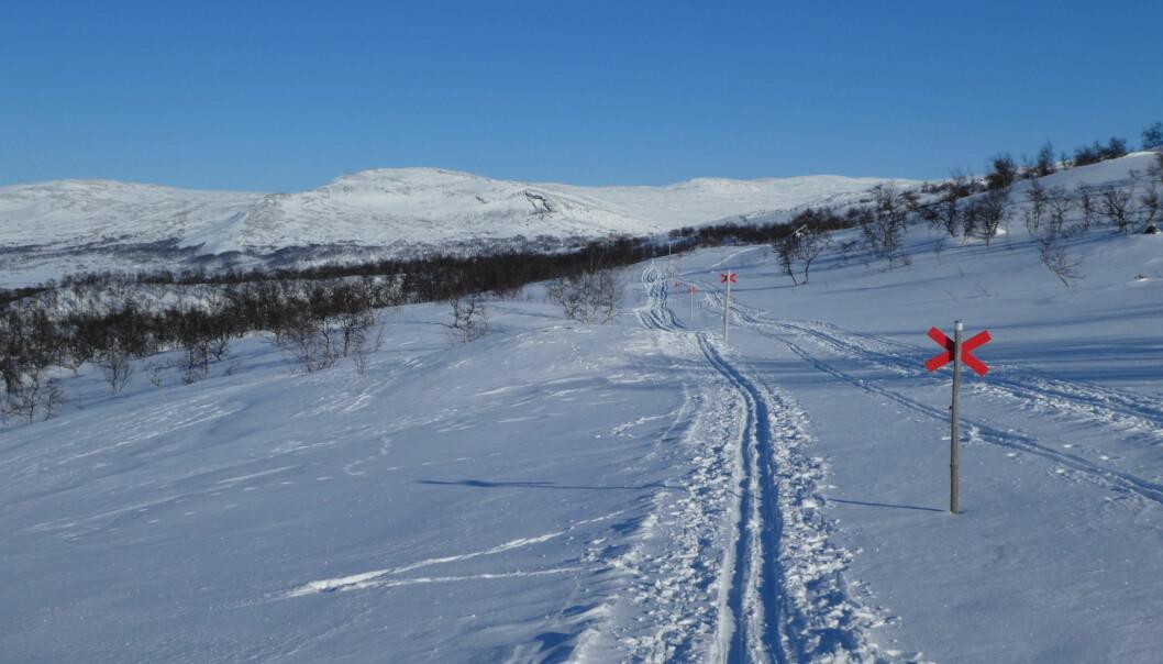 Vinterleden mellan Storulvån och Blåhammaren.