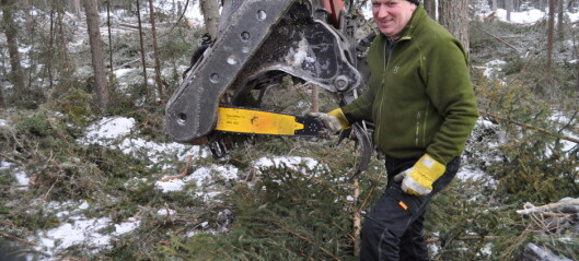 Snörika vintern orsakar kraftiga hinder för skogsbruket