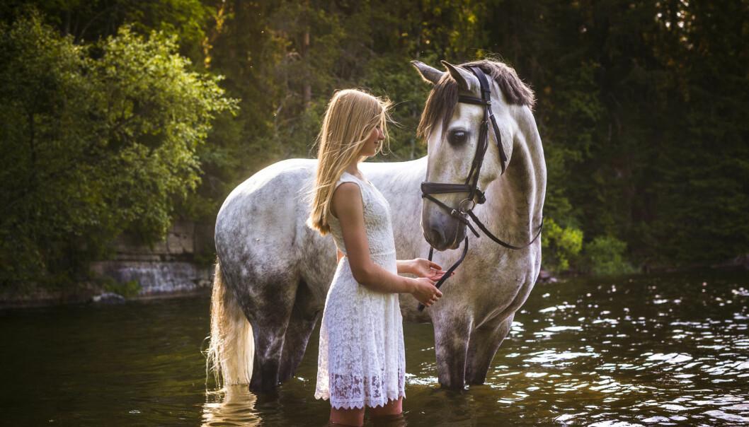 Favoritmotiv är hästar.