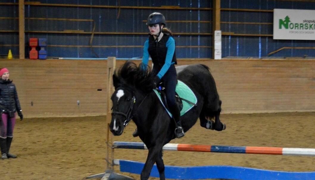 Sofia Amrén från Färsån har ridit i tre år. Hon var en av tre deltagare som lärde sig mer om hur det fungerar på klubbtävlingar, när Ridklubben Östjämten arrangerade en hoppkurs.