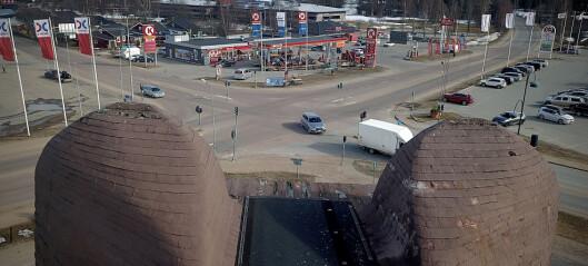 SFU vill ta över träbjörnen i Sveg