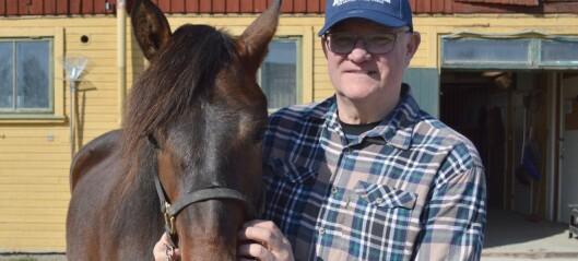 Hasse köpte Järvsö Ingvild på auktion – men fick Järvsö Tora i stället