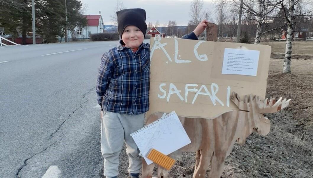 Einar Kristensen, fem år, ordnar älgsafari i Bonäshamn.