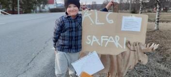 Femårige Einar ordnar älgsafari i Bonäshamn