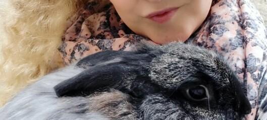 Jämtlands första kaninhem har öppnat