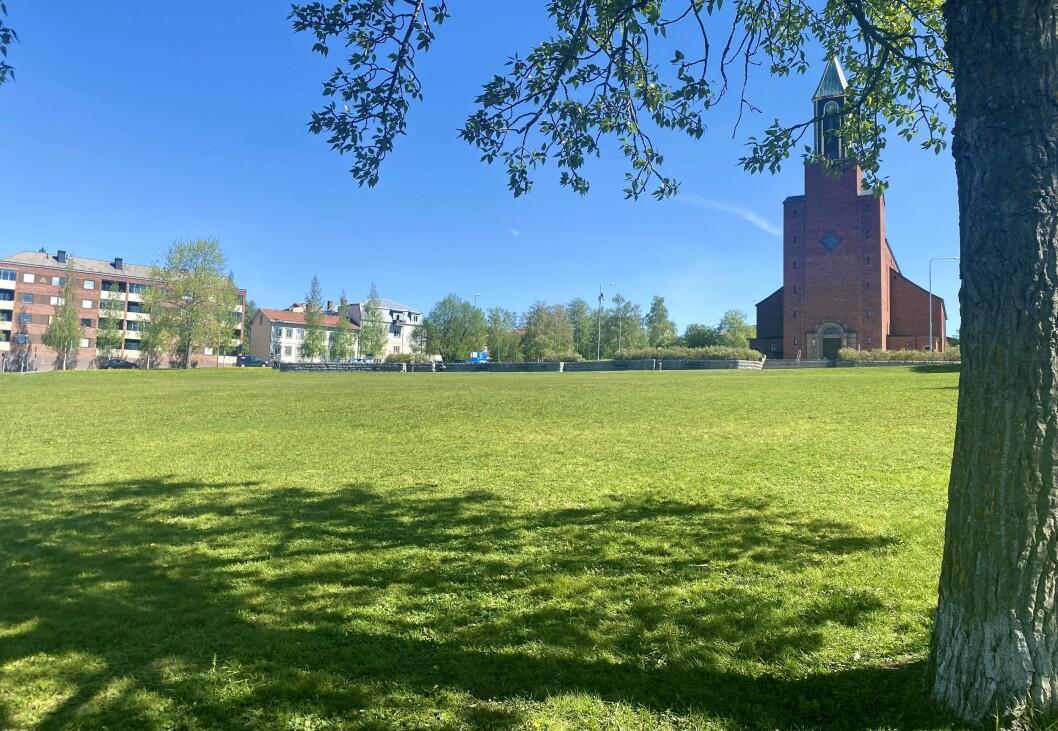 En ljuspunkt i historien var de privatpersoner som såg till att parken rensades på skräp under söndagen. Nu ser det betydligt trevligare ut.
