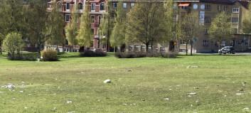 """Gatuchefen rasar mot svineriet i Österängsparken: """"Sopor och krossat glas överallt"""""""