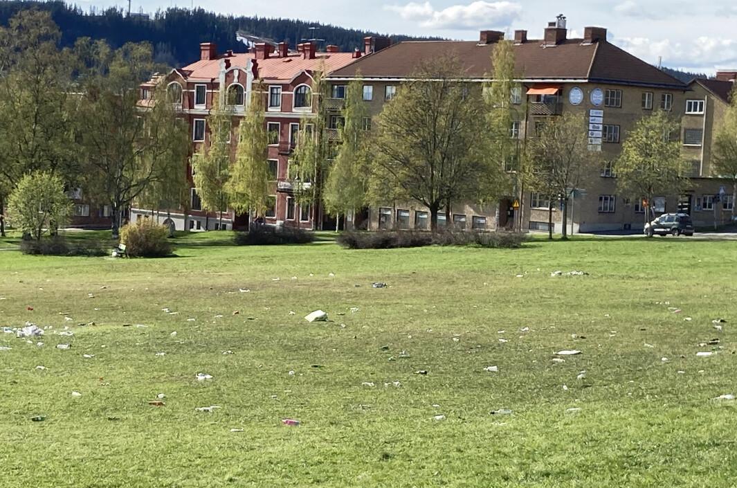"""Så här såg Österängsparken ut efter förra fredagens festande. """"Det är beklämmande"""", säger Ulf Norlén, gatuchef på Östersunds kommun."""