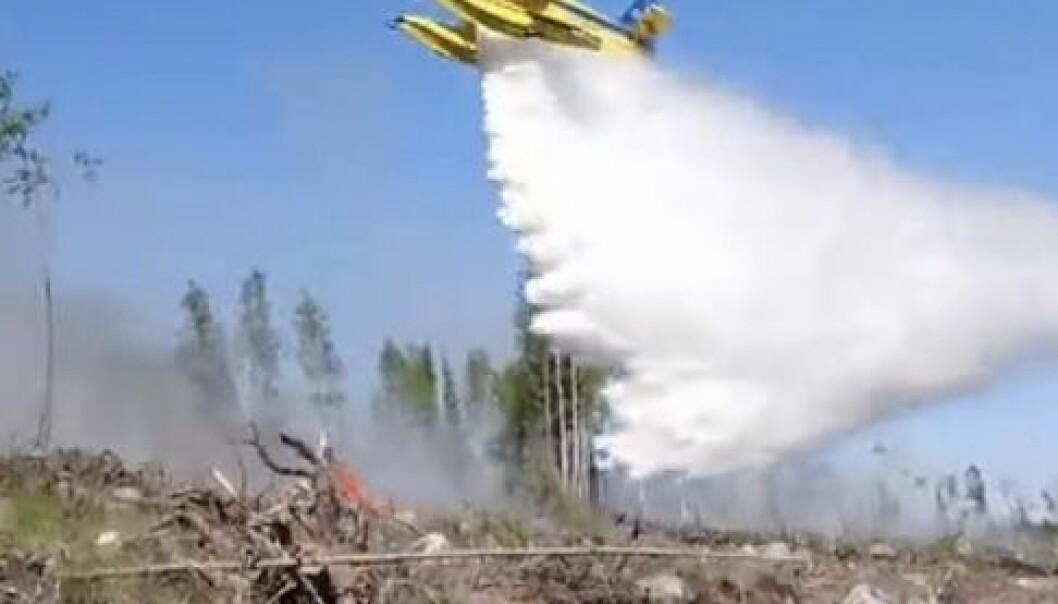 De två nya brandflygen är upphandlade av MSB och var på väg till Östersund när larmet om branden kom. De kunde snabbt sättas in och begränsa brandspridningen
