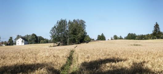 162 miljoner kronor beviljat för klimatinvesteringar i länet