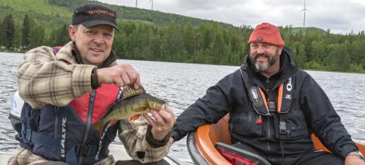 Broman fiskade åter i Berg