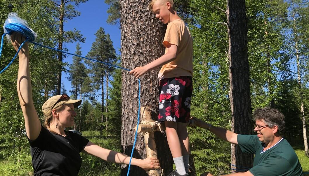 Emil Eriksson hjälper ledarna Helvi Rosendahl och Hans Olof Carlsson med att bygga en balanslina. Stegen är också barnens skapelse.