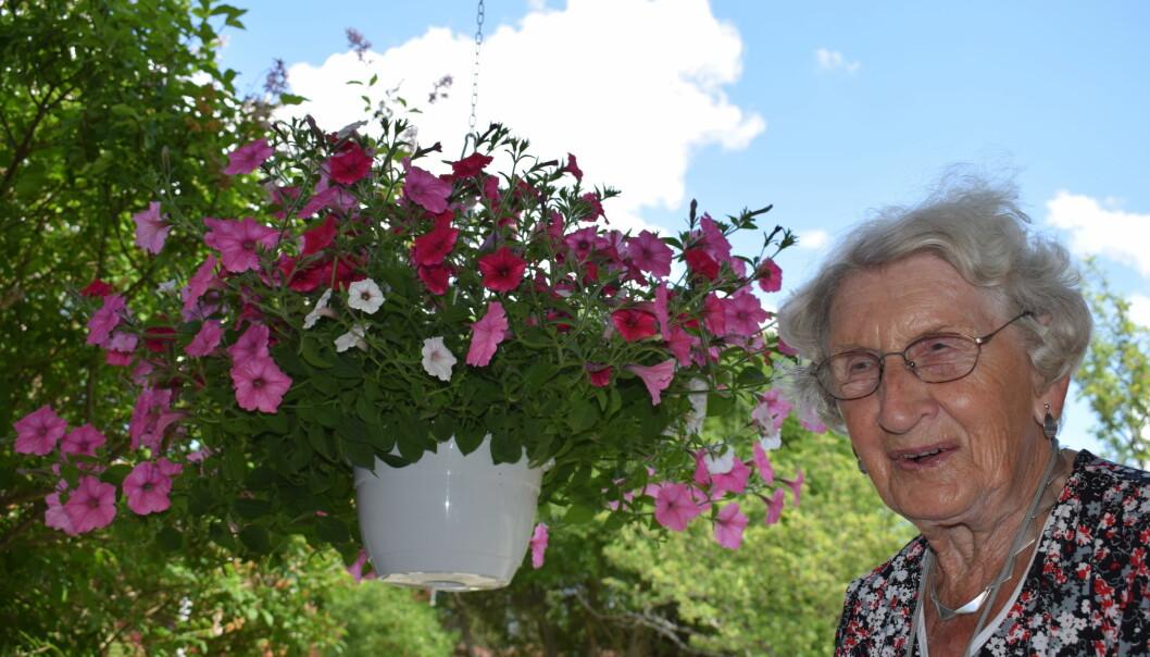 93-åriga Rut har gröna fingrar och äskar blommor. Henne uteplats är full med blommor men Krokomsbostäder vill att hon flyttar en trappa upp.