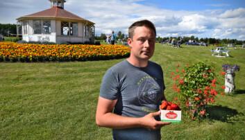 Claes äger Jordgubbslandet på Rödön och har fortfarande inte tröttnat på bären.