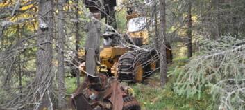 Skogen slukar urskördaren - ett maskinmysterium i länet