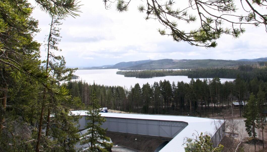 """Nästa vecka arrangeras en löpartävling med målgång vid skidtunneln i Gällö. Området har hittills i sommar lockat många turister. """"Det är jättemycket folk som är uppe i berget och vandrar och tittar på utsikten"""", säger Jerry Ahrlin, sportchef för MidSweden 365."""