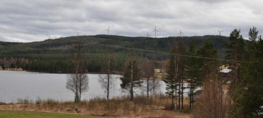 """Bräcke kommun stoppade vindkraftpark – nu rasar markägare: """"Uselt underlag"""""""