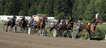 Sista tävlingsdag på Ovallatravet för säsongen - första med publik