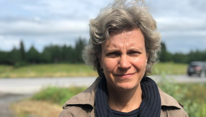 Ingeborg Israelsson säger att det är illa nog att barn i högstadiet ska behöva korsa E14 för att ta sig till bussen.