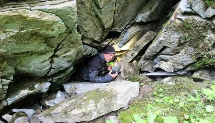 Oscar Svensson är på väg ner i en spricka för att undersöka en potentiellt dykbar grottgång. Gruppen hittade fem potentiella grottor under Bjurälvens böljande yta. Foto: Ola Löfquist