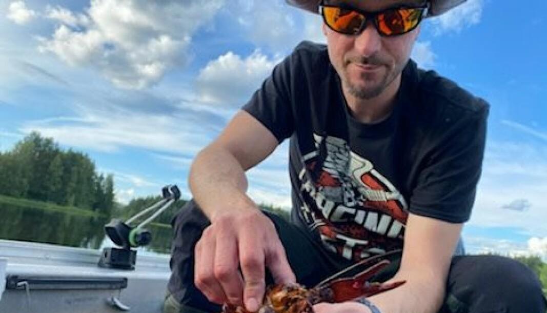 Anders Sjödin, styrelsemedlem i Rossöns fiskevårdsområdesförening, med lyckad fångst från provfiskeburarna under introduktionskvällen. Fiskekorten sålde slut till premiärkvällen, men det finns några kvar till den kommande helgens kräftfiske. Foto: Erik Bryntesson
