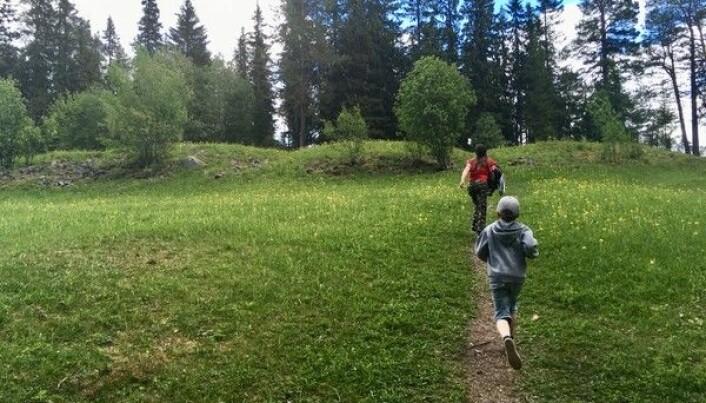 Sommaren 2019 begav sig familjen till Mjälleborgen på Frösön. Foto från bloggen.