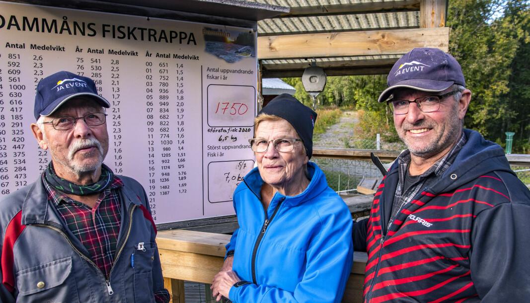 Roger och Agneta Staaf tillsammans med Lasse Albertsson kammade noll den sista tömningen för säsongen vid Dammåns fisktrappa.