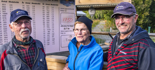 Rekordantal passerade fisktrappan i sommar