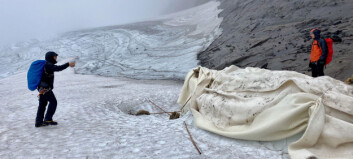 Världsunikt experiment lyckades på Helags – dukar av ull kan rädda våra glaciärer